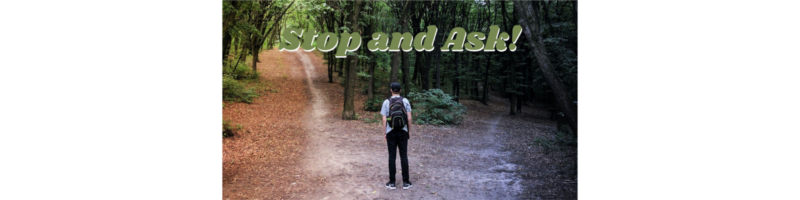 Stop and Ask!: Part 2