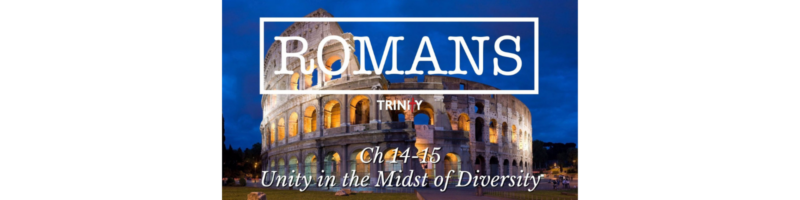 Romans: Unity in the Midst of Diversity
